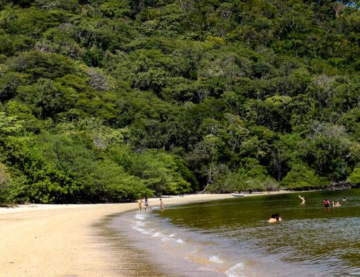 Curving bay of playa nacascolo costa rica.