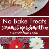 Caramel No bake treats with decorations flowers in them.