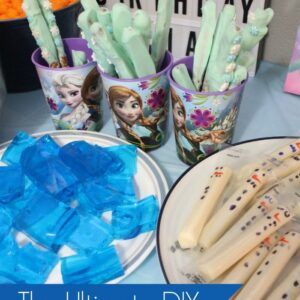 DIY Frozen Birthday Party