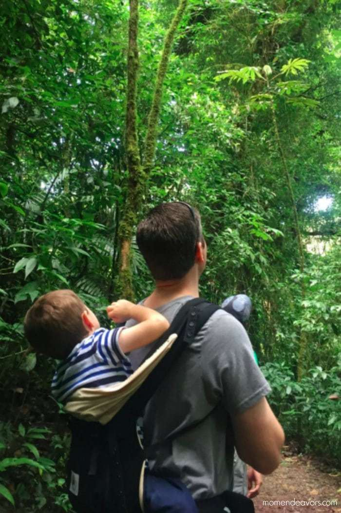 Stroller in Costa Rica Family Travel