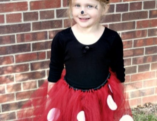 This adorable no sew Minnie Mouse costume is super easy to make, won't break the bank, and looks super cute! Includes step by step instructions for the tutu and the bows, and materials information with shopping lists.