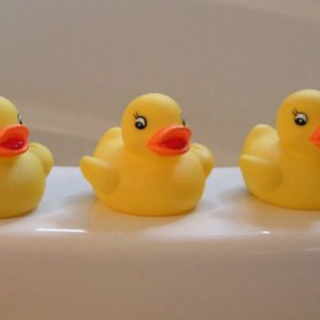 rubber ducks on bath tub rim