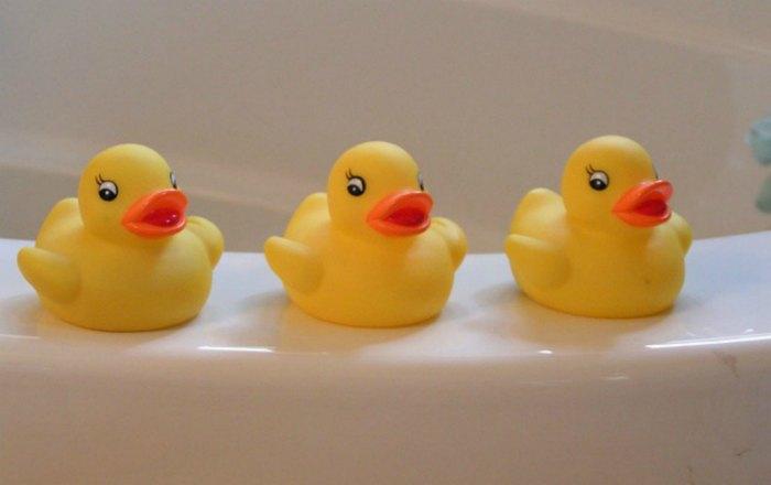 rubber ducks on bath tub rim