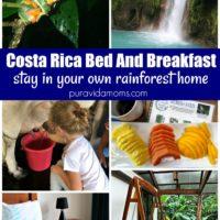 Rainforest House Pamphlet