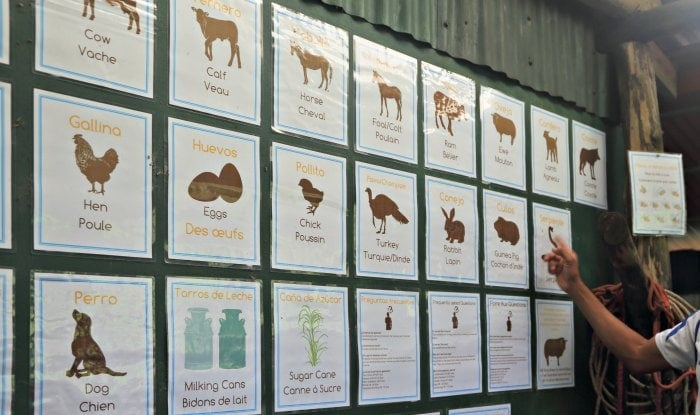 Animal signs printed in English, Spanish and French