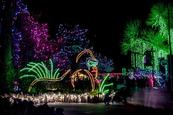 Denver Zoo Lights With Young Children