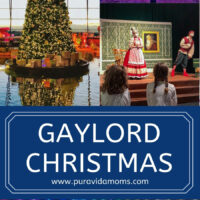 Gaylord Christmas 2020 Pin