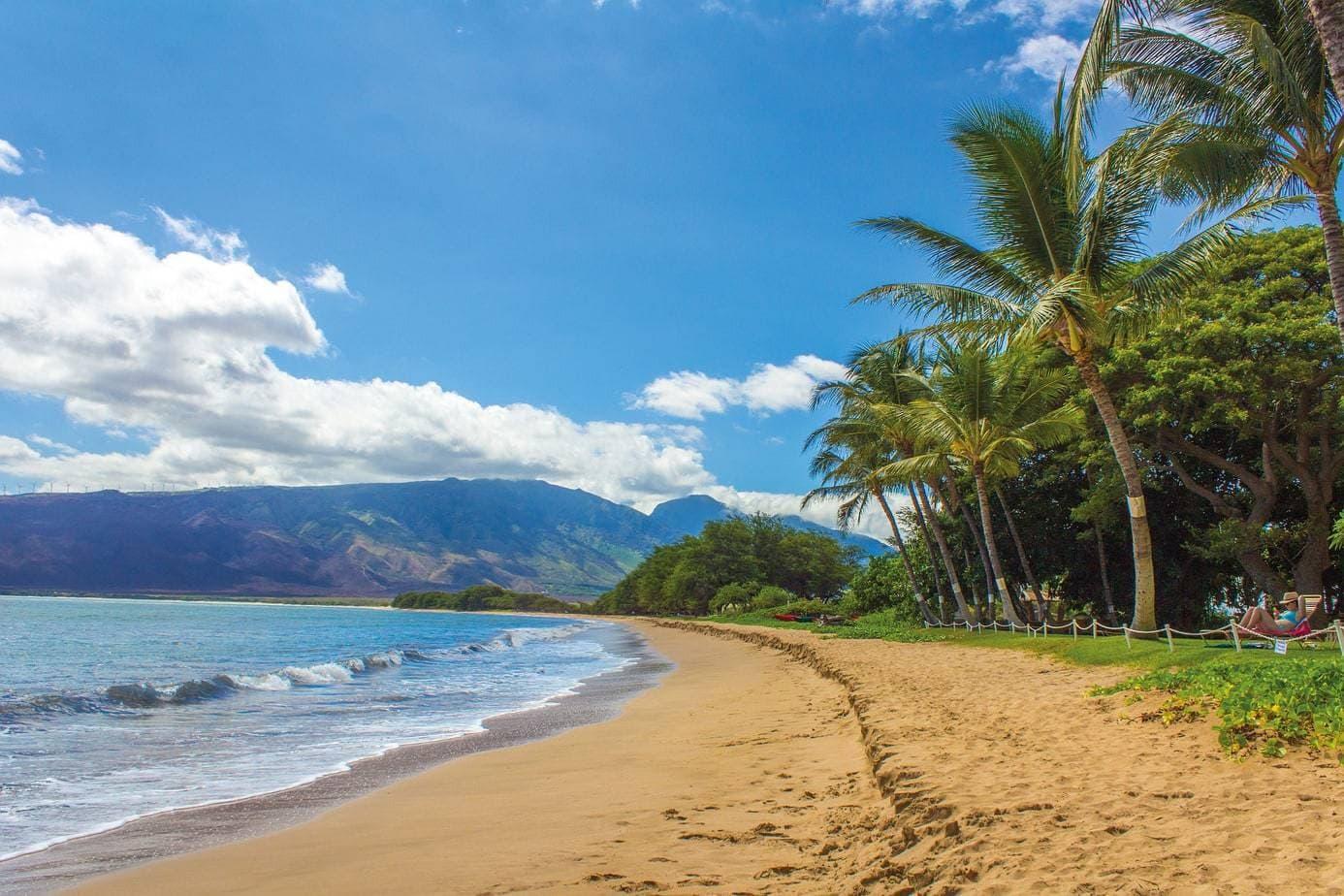 Hawaii beach in broad daylight