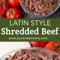A medium serving bowl of shredded beef.
