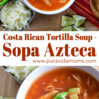 The tortilla soup topped with garnish.