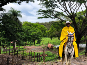 costa rican rancher on a horse in bright yellow rain gear