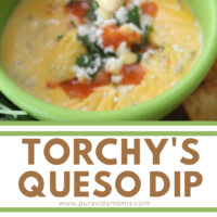 torchy's queso dip pinterest image