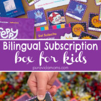 tools to help bilingual kids subscription box feppy play.