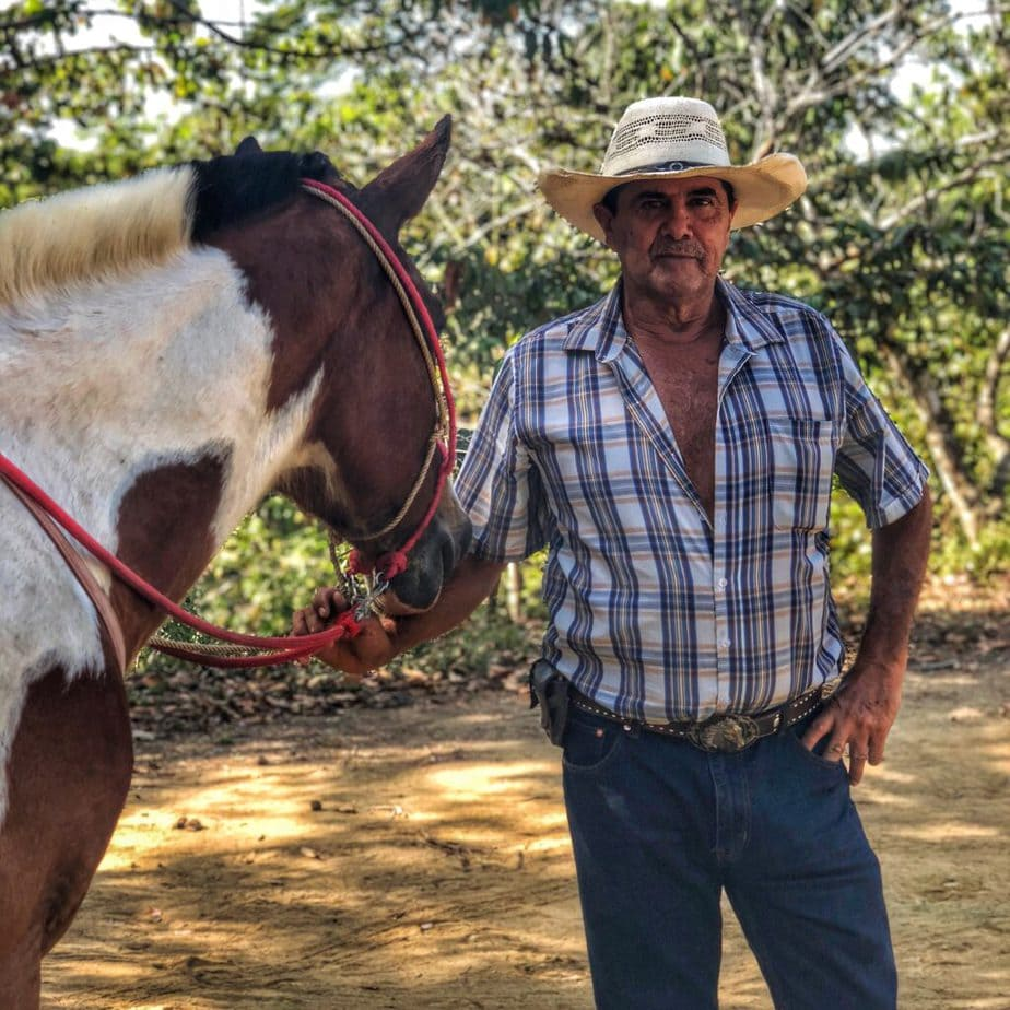 Costa Rican man and horse