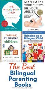 Bilingual Parenting Books pin
